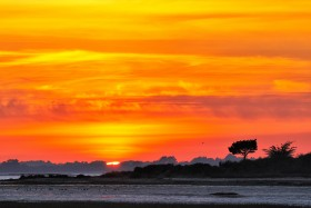 SUNSET;COUCHANT;COUCHER DE SOLEIL;MAREE;TIDE;BASSE;LOWER;GOLFE DU MORBIHAN;CREPUSCULE;TWILIGHT;ORANGE;ROUGE;RED;CONTRE JOUR;BACKLIGHT